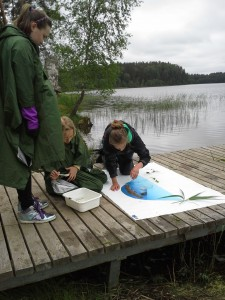 Studying water invertebrates at Lake Ähijärv